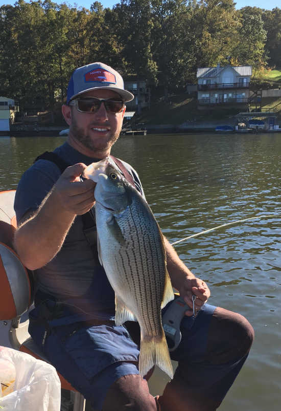 Column: Josh Gowan: Heartlander Abroad: Lake of the Ozarks